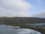 Macquarie Island. Photo: Melinda Brouwer